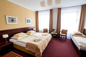 Hotel Petr - Double room with one extra bed